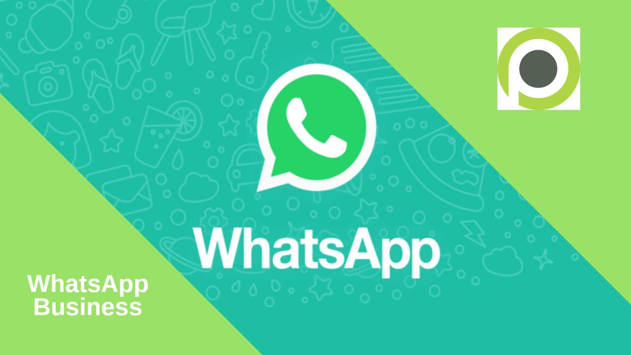 Whatsapp Wazindua Whatsapp Ya Biashara